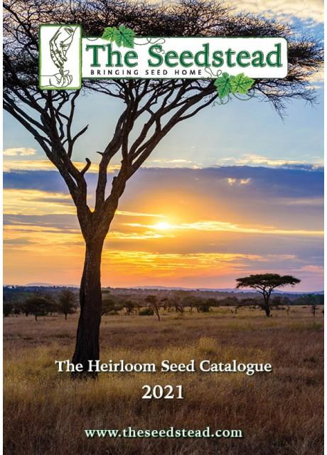 The Seedstead 2020 Catalogue