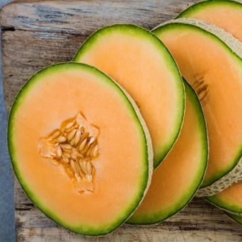 Hale's Best Cantaloupe