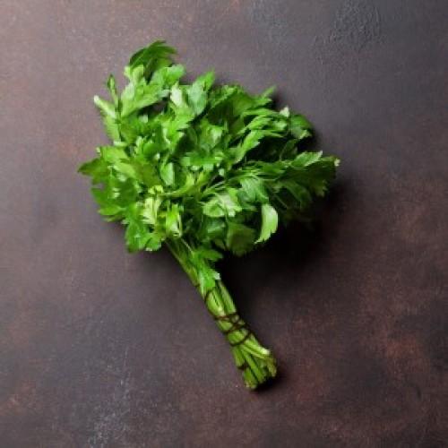Italian Parsley (Flat Leaf)
